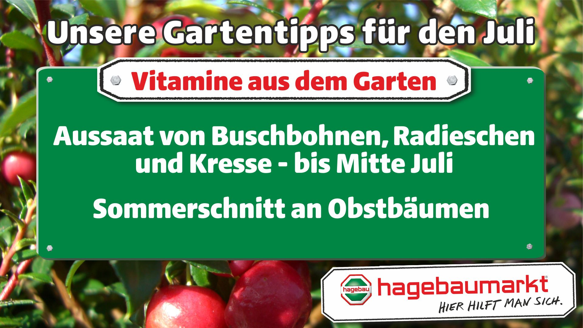 GartenberaterTVVitamine1_Juli_1.jpg