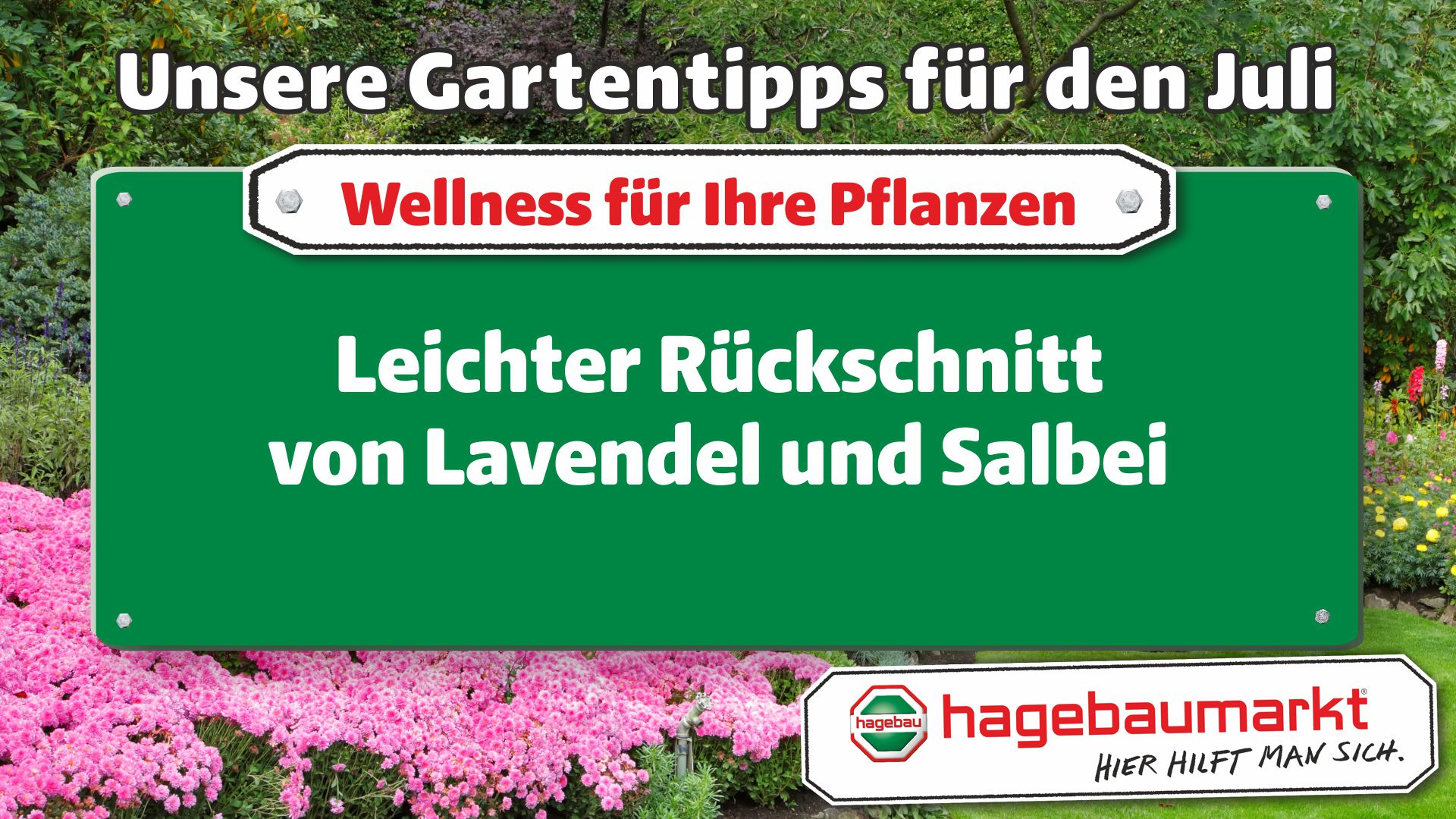 GartenberaterTVWellness1_Juli_2.jpg