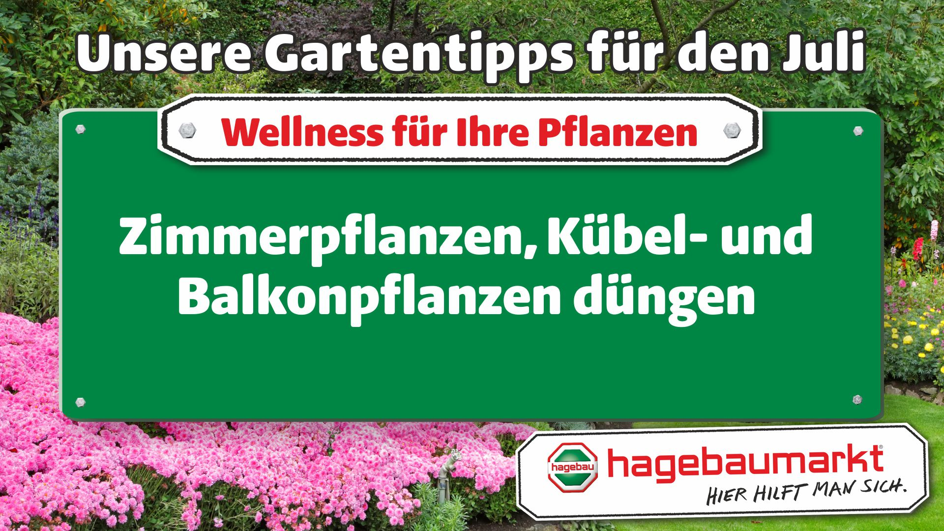 GartenberaterTVWellness1_Juli_4.jpg