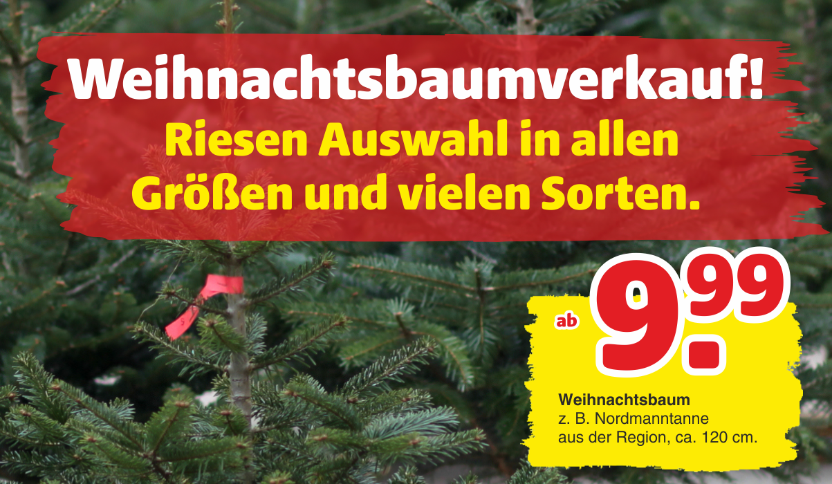 Weihnachtsbäume Hagebaumarkt