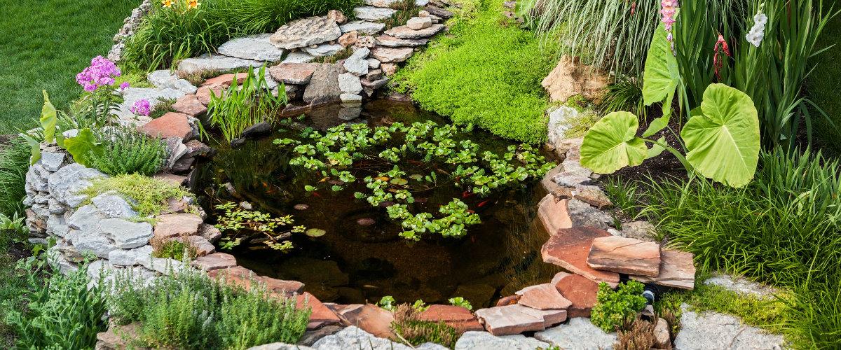 Gartenteich und Bachlauf | Moelders Webseite